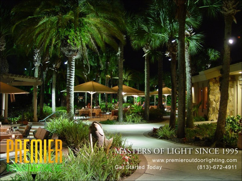 Wesley Chapel Landscape Lighting Company in Activity Lighting photo gallery from Premier Outdoor Lighting