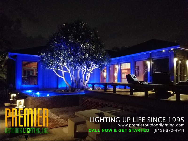 Colored Lighting Company Tampa Florida in Colored Lighting photo gallery from Premier Outdoor Lighting