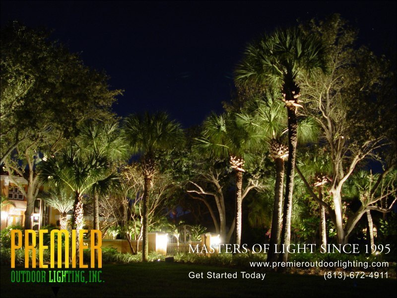 Landscape Lighting Techniques  - Company Projects in Landscape Lighting photo gallery from Premier Outdoor Lighting