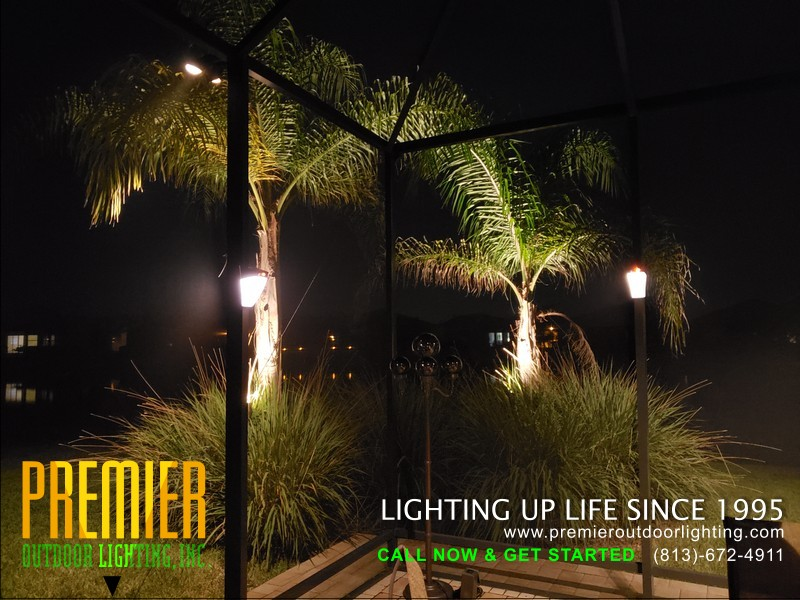 LED Screened Cage Lighting Projects in Pool Cage Lighting photo gallery from Premier Outdoor Lighting