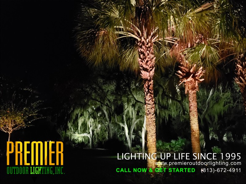 Tampa Landscape Lighting Services in Residential Outdoor Lighting photo gallery from Premier Outdoor Lighting