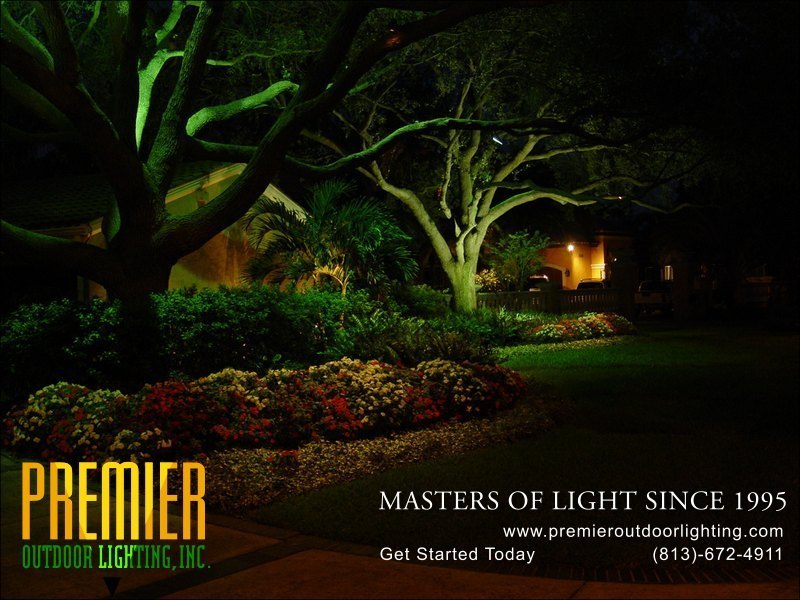 Tree lighting photo gallery image 15 premier outdoor for Landscape lighting companies