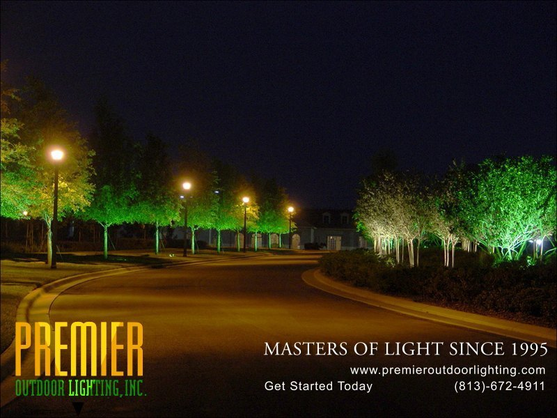 Tree Lighting Techniques  - Company Projects in Tree Lighting photo gallery from Premier Outdoor Lighting